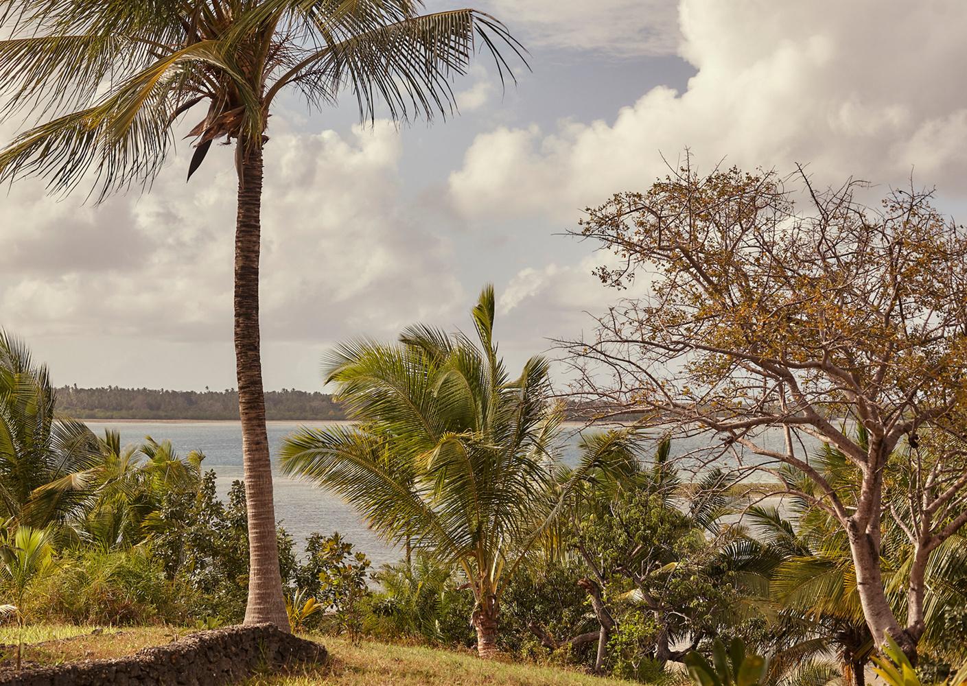 Island Life< ?php echo $image['alt']; ?>